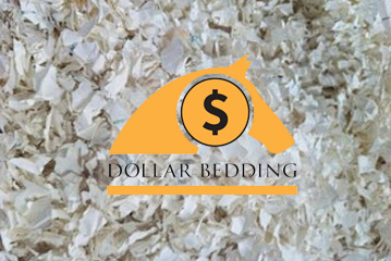 Acadami stockists of Dollar Paper Bedding