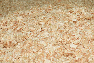 Acadami Quality Wood Shavings