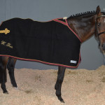 Acadami Bedding in stable